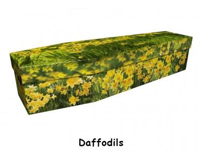 ecoffins-06.jpg